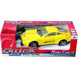Quick RACE R/C CAR