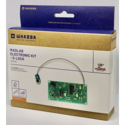 WSG101 MADLAB E-Lock